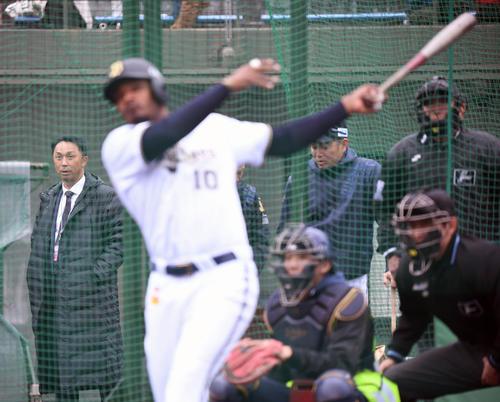 オリックスキャンプを訪れた本紙評論家の宮本慎也氏はジョーンズの打撃練習に鋭い視線を向ける(撮影・前岡正明)