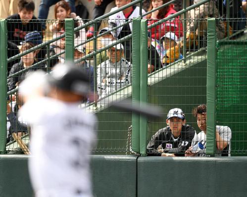 練習試合 ロッテ対楽天モンキーズ ベンチ横から試合を見学するロッテ佐々木朗(左)。右は種市(撮影・横山健太)