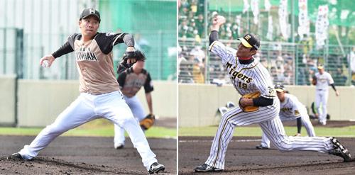 練習試合で力投しともに2回無失点に抑えた左から日本ハム斎藤と阪神藤浪