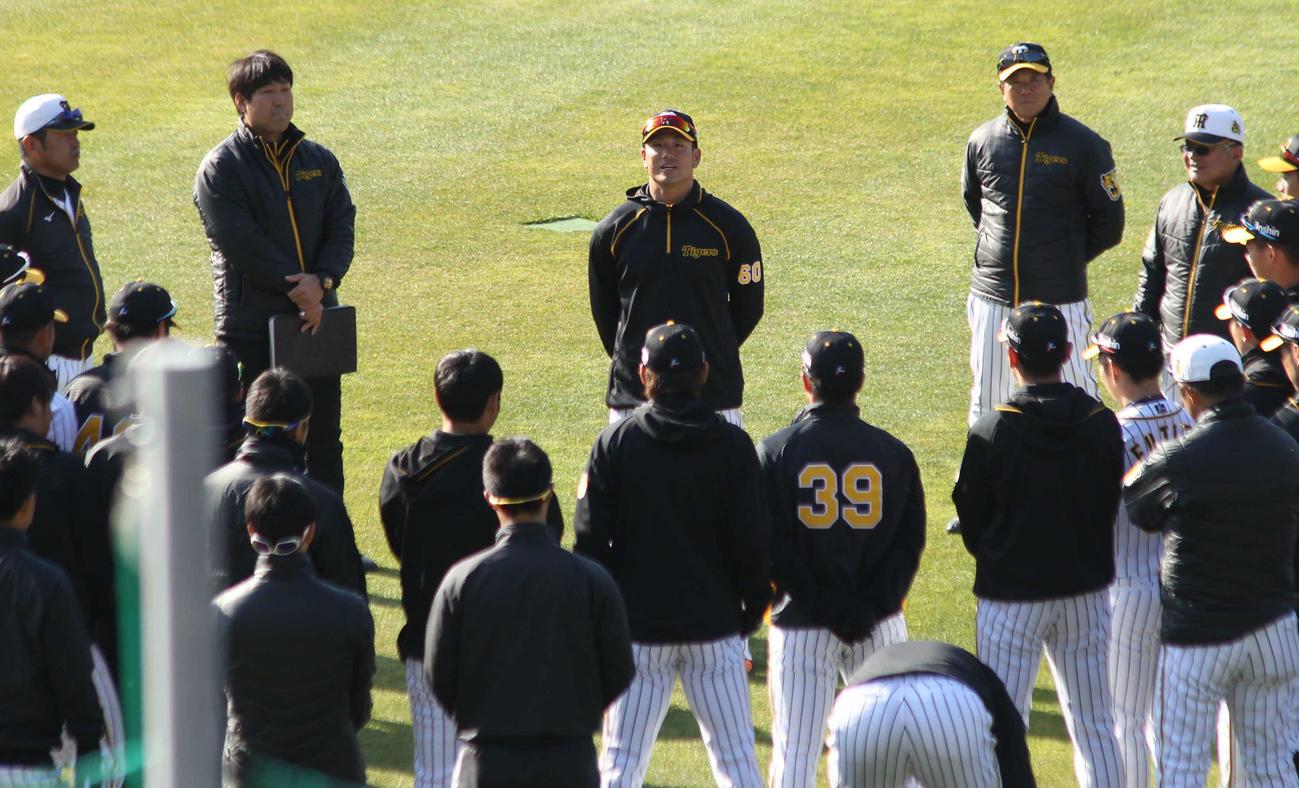 阪神中谷(中央)は朝の声出しで田中スカウトとの「男の約束」を明かした(撮影・酒井俊作)