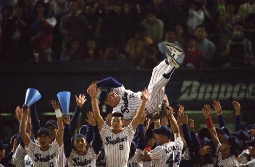 95年9月、リーグ優勝で野村監督胴上げの前でバンザイ(左から2人目)
