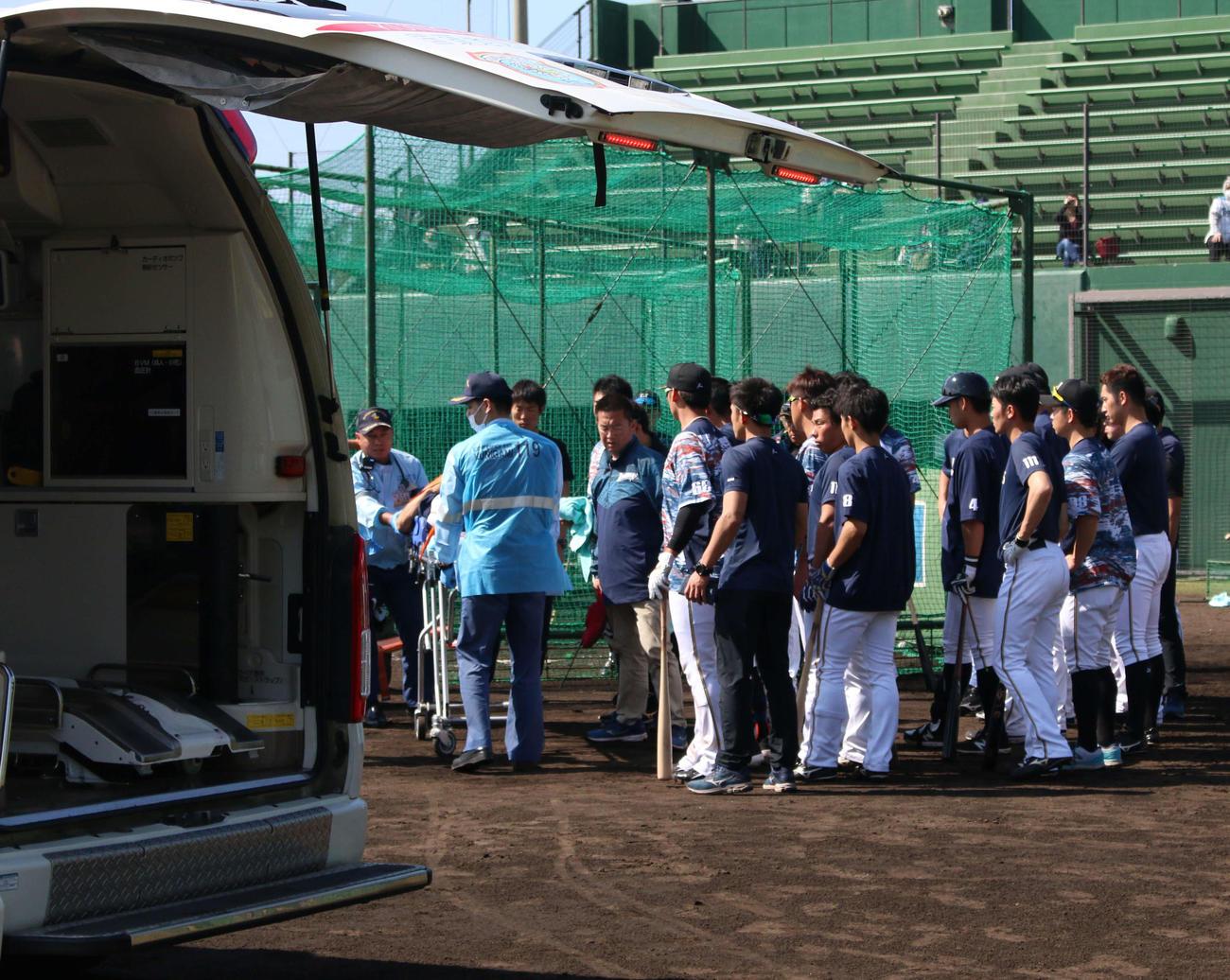 2軍の沖縄・国頭キャンプの練習中に倒れた城石2軍内野守備コーチが選手らに囲まれながら救急車へ=午後1時33分頃(撮影・木下大輔)