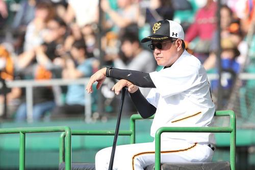 沖縄でのキャンプ初日を迎え真剣な表情で練習を見つめる巨人原監督(撮影・河野匠)