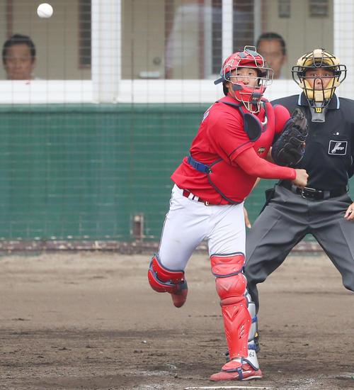 練習試合 阪神対広島 5回裏阪神2死一、三塁、一走近本の二塁盗塁を阻止する石原貴(撮影・前田充)