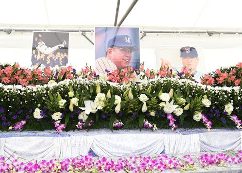 野村克也さんを偲び設置された献花台(撮影・横山健太)