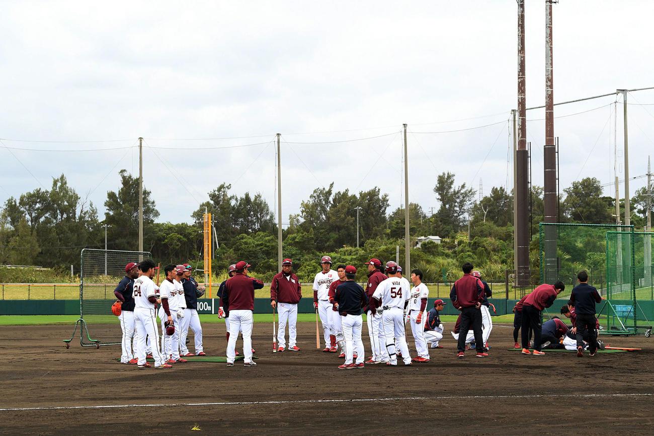 フリー打撃中に戸村打撃投手(右下)に打球が当たり、練習を中断し集合する楽天の野手陣(撮影・滝沢徹郎)