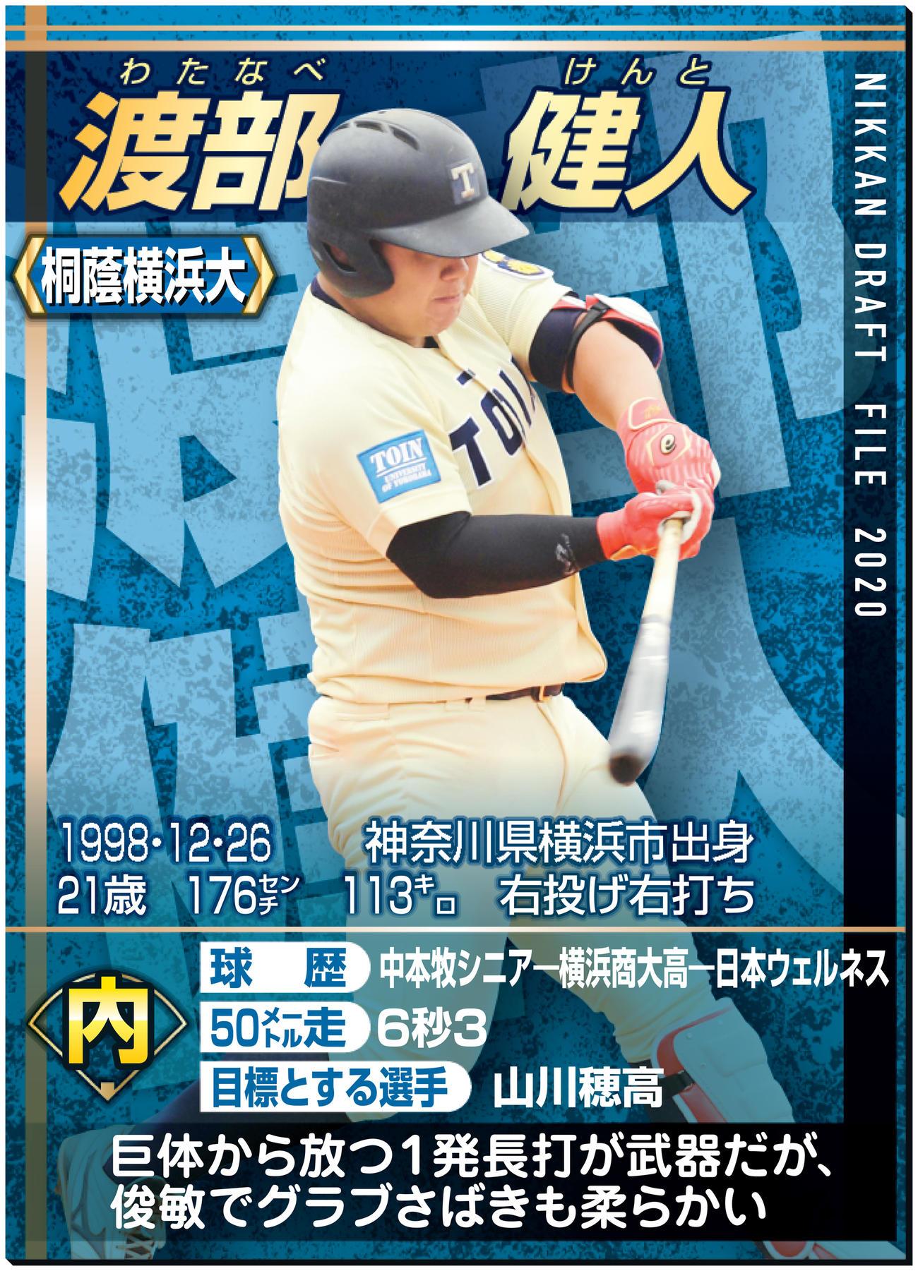 桐蔭横浜大・渡部はプロ1本 巨漢113キロも遊安 - アマ野球写真 ...
