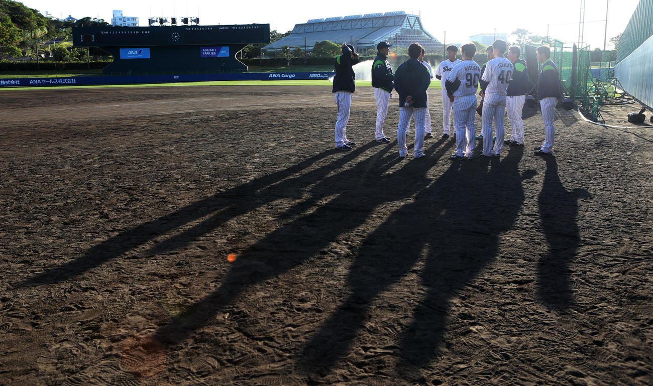 練習試合ヤクルト対楽天 試合後、西陽が差す中、反省会をするヤクルト投手陣(撮影・狩俣裕三)