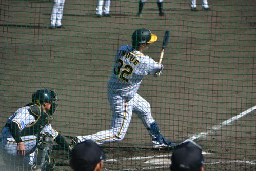 ケースバッティングで福永から左越え本塁打を放った阪神井上(撮影・望月千草)