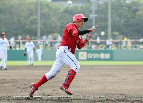 巨人対広島 7回表広島無死、小園海斗は右越えにソロ本塁打を放つ(撮影・栗木一考)