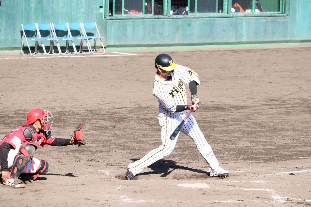 阪神2軍対高知FD 8回裏1死、阪神中谷は2戦連発となる左越え本塁打を放つ(撮影・只松憲)