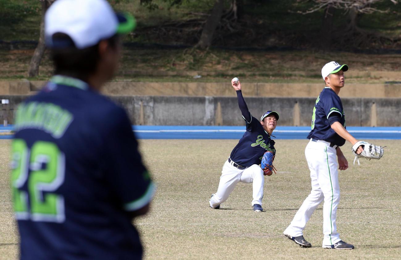 高津監督(手前)が見守る中、キャッチボールをする小川(後方)と石川(撮影・狩俣裕三)
