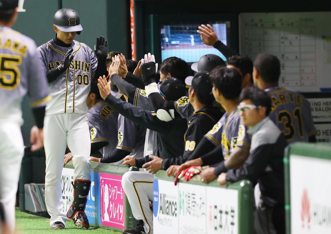 阪神上本1号「ポンらしさ今日も出ていた」矢野監督 - プロ野球写真 ...