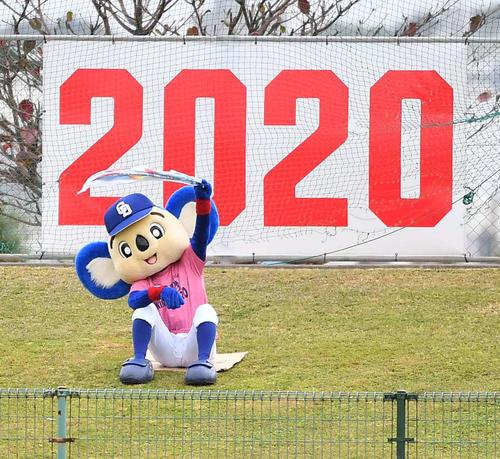中日対ロッテ練習試合 外野で応援するドアラ(20年2月15日撮影)