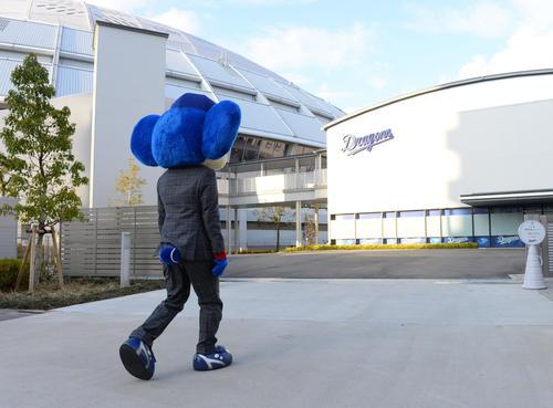 契約更改の行われる球団事務所へ向かうドアラ(19年12月18日撮影)