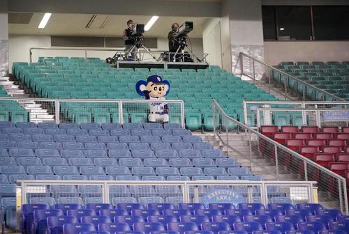 中日対広島 無観客試合となり誰もいないスタンドを寂しげに見つめるドアラ(2月29日撮影)