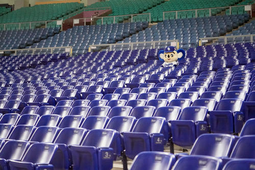 2月29日の中日対広島 無観客試合となり誰もいないスタンドを寂しげに見つめるドアラ(撮影・森本幸一)