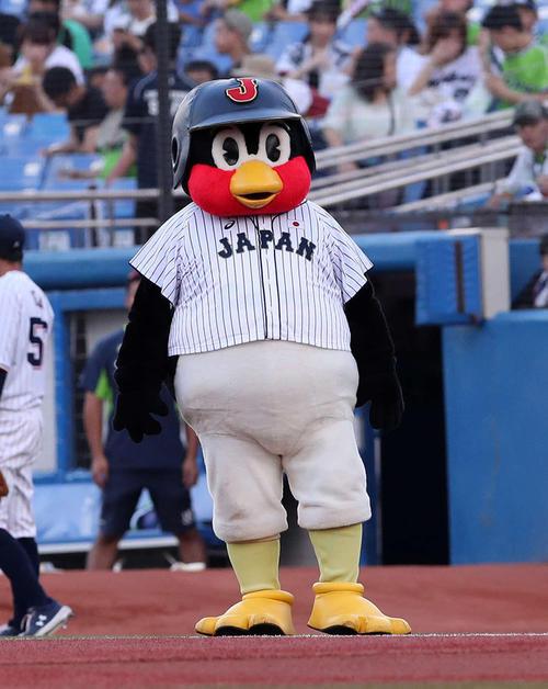 19年8月14日のヤクルト対DeNA 試合開始前、侍ジャパンユニホーム着てパフォーマンスするつば九郎