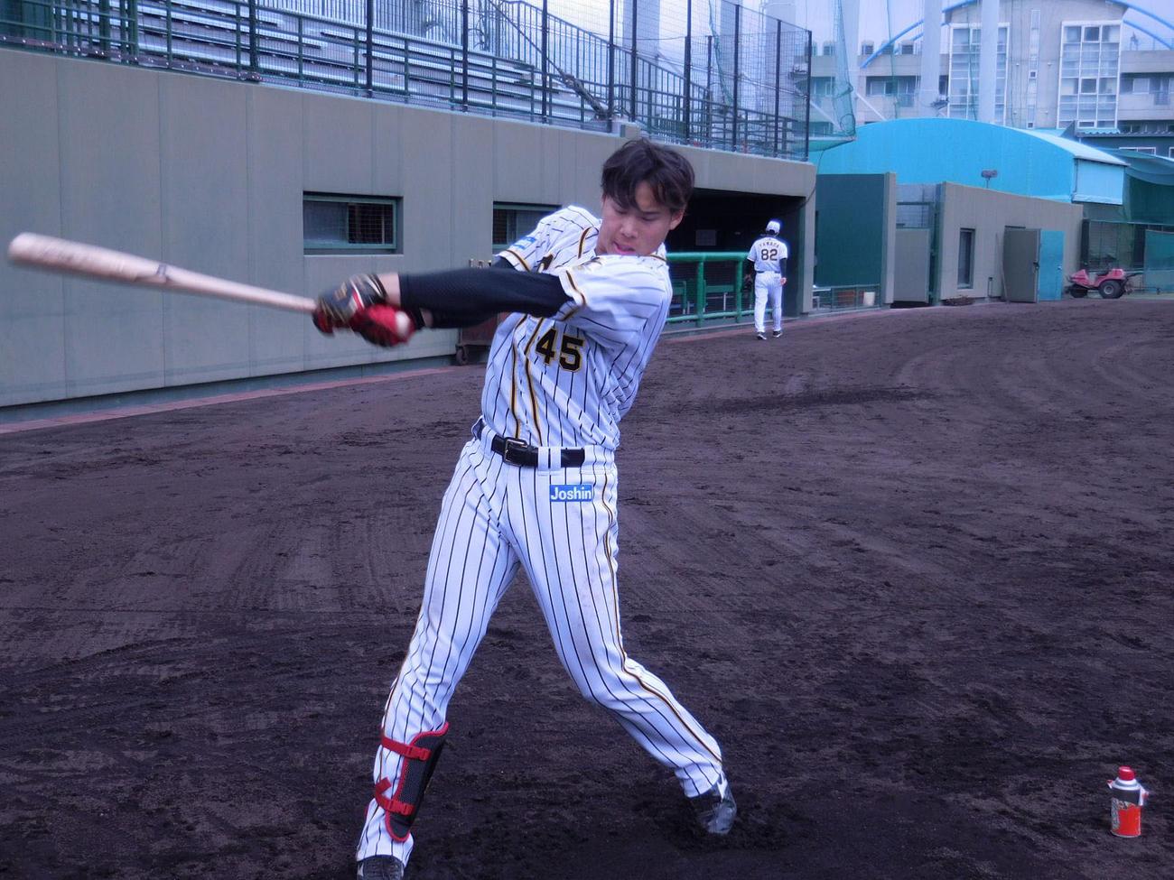 鳴尾浜球場で練習を行う阪神遠藤(球団提供)