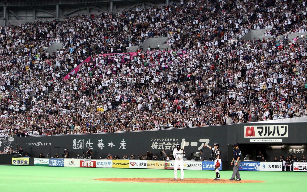10年、稲葉の打席で応援する札幌ドームのファン