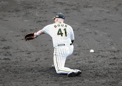 阪神紅白戦 6回表紅組1死、大山の打球を後逸する一塁手ボーア(撮影・前田充)