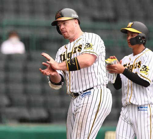 練習試合・阪神対広島 6回裏阪神無死二塁、ジャスティン・ボーアは中越え2点本塁打を放ちベンチに向かってポーズする(撮影・上山淳一)