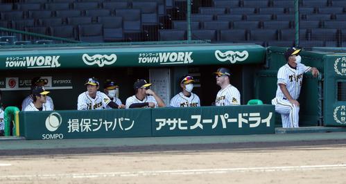 練習試合 阪神対広島 4回裏阪神無死一塁、右越え2点本塁打を放ったジャスティン・ボーア(右から2人目)はサイレントトリートメントで迎えられる(撮影・前田充)