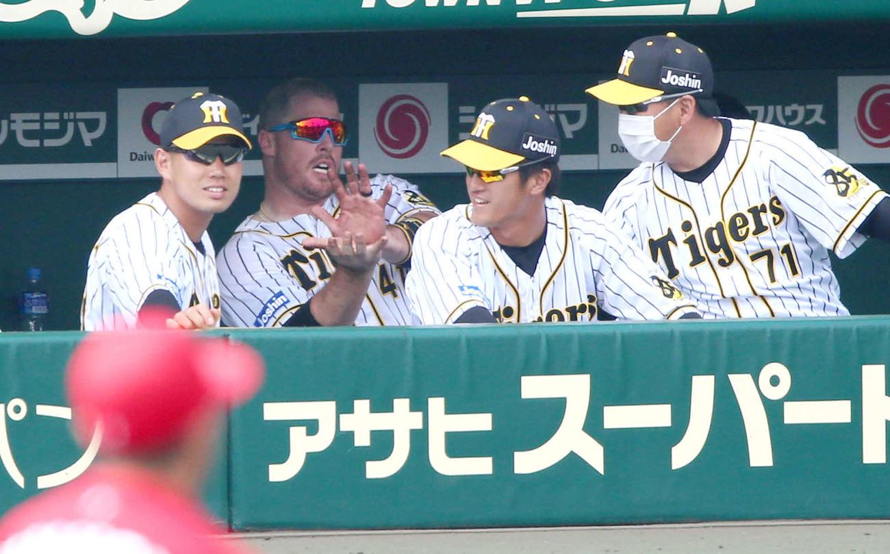 阪神対広島 3回裏阪神無死一塁、右越え2点本塁打を放ちベンチでもう一度「ファイアーボール」ポーズするボーア(左から2人目)(撮影・上山淳一)