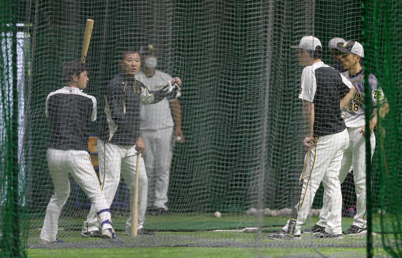 福留(左から2人目)から打撃のアドバイスを受ける近本(左端)。右端は見守る矢野監督(撮影・前田充)