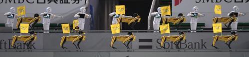 ソフトバンク対楽天 7回裏、左中間スタンド特設ステージで人間ロボット「ペッパー」と4足歩行型ロボット「スポット」がコラボレーションダンスを披露(撮影・今浪浩三)