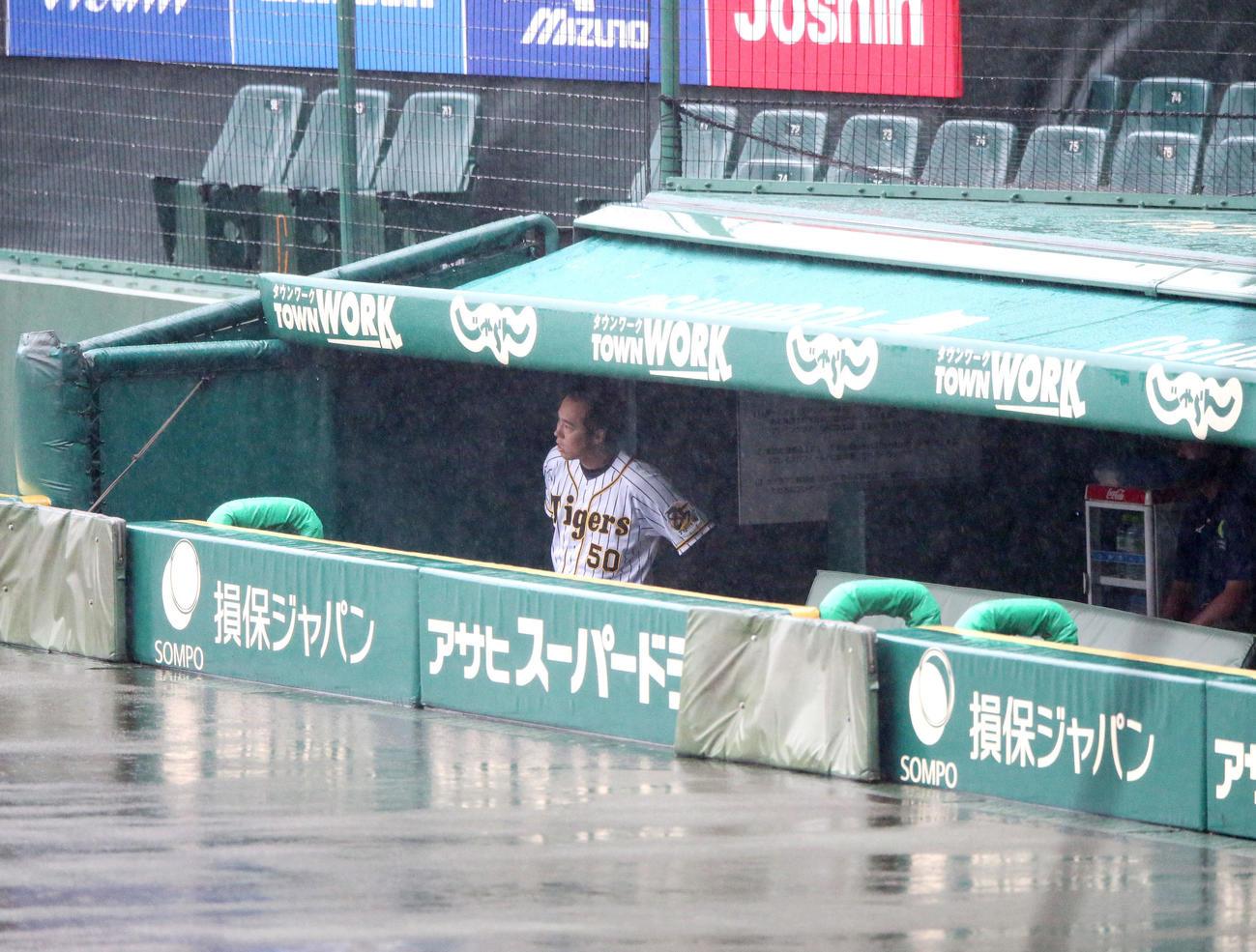 突然の雨で水浸しとなったグラウンドをベンチから眺める青柳(撮影・上山淳一)