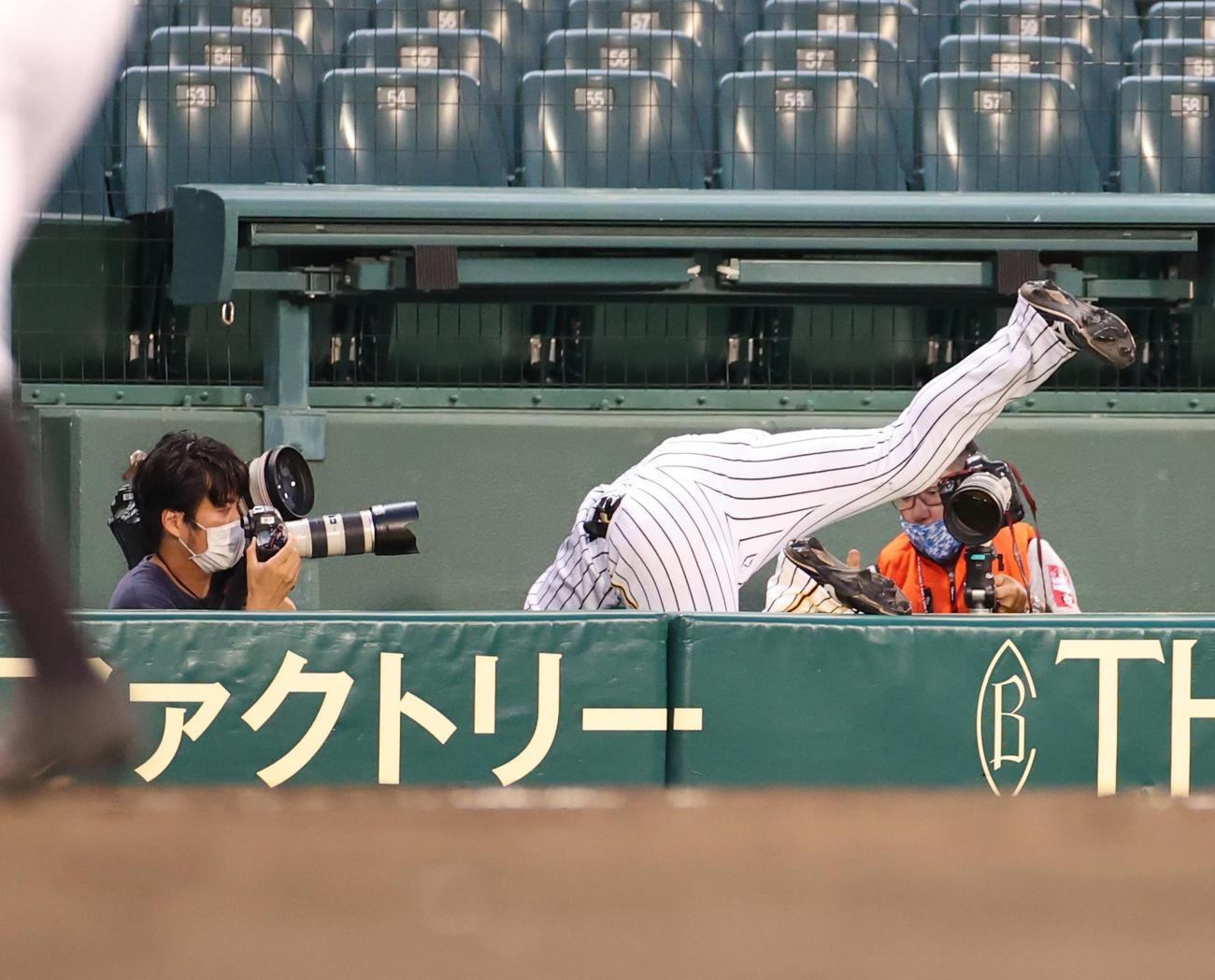 阪神対巨人 5回表巨人2死、丸の飛球をカメラ席前で捕球した三塁手大山はカメラマン席に転落する(撮影・河野匠)