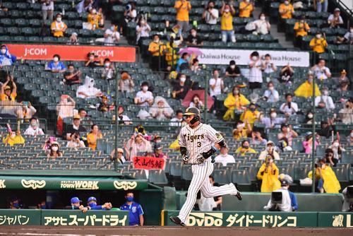 阪神対DeNA 1回裏阪神1死、応援するファンを背に左越えソロ本塁打を放つ大山悠輔(撮影・上田博志)