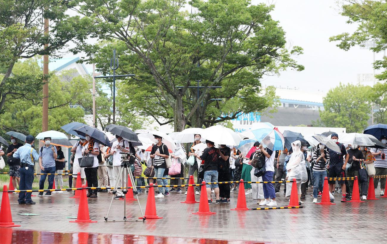 雨の中、巨人-ヤクルト戦の開場を待つ観客ら(撮影・前田充)