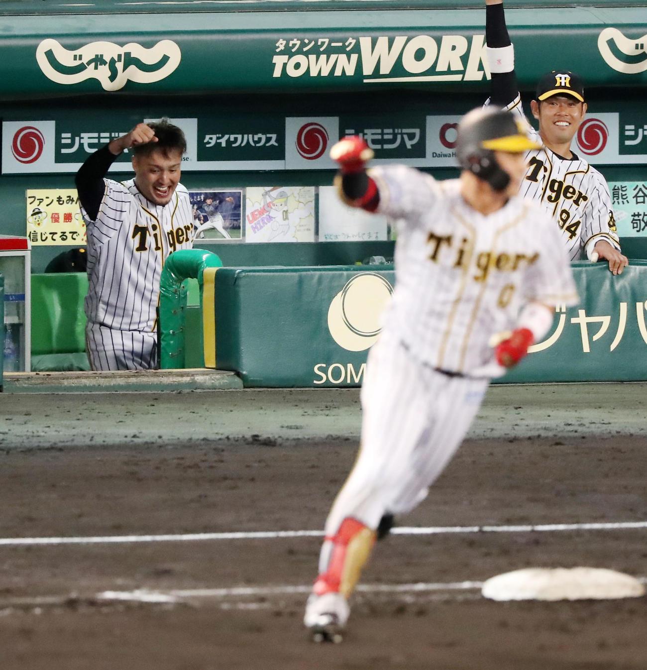 阪神対ヤクルト 6回裏阪神1死一塁、木浪の左越え2点本塁打にベンチでガッツポーズを見せる秋山(撮影・加藤哉)