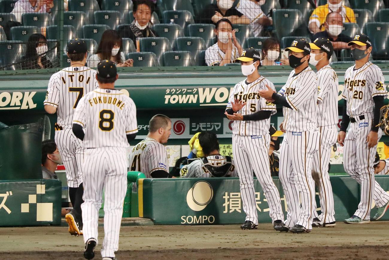 阪神対ヤクルト 8回表を終えベンチ前でナインを出迎える近本、右は陽川(撮影・加藤哉)