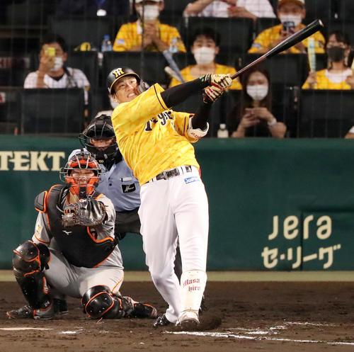 阪神対巨人 8回裏阪神1死満塁、代打中谷は左越え満塁本塁打を放つ(撮影・加藤哉)