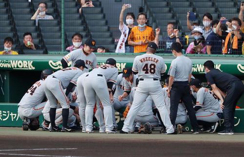 阪神対巨人 試合前の円陣を組む巨人ナイン(撮影・加藤哉)
