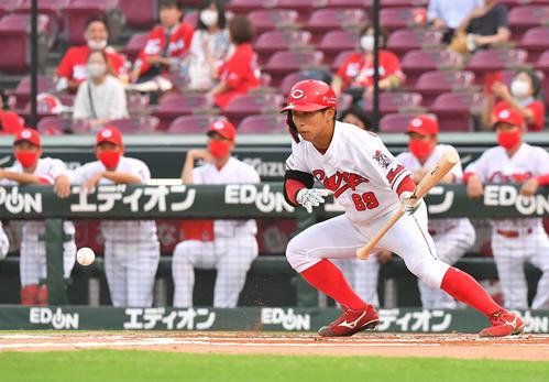 広島対阪神 1回裏広島無死一塁、送りバントを決める羽月隆太郎(撮影・上田博志)=2020年8月7日、マツダスタジアム