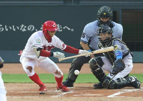 2回裏広島1死一、三塁、一塁線へのバントで適時内野安打としプロ初安打を記録する羽月隆太郎(撮影・清水貴仁
