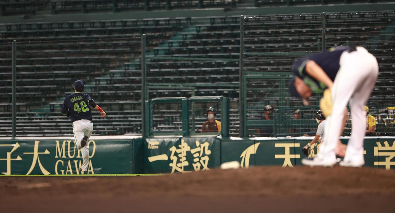 阪神対ヤクルト 7回裏阪神2死二、三塁、打者近本の時、ヤクルト・マクガフが無人の一塁へけん制し、それたボールを一塁手坂口が追いかける(撮影・清水貴仁)