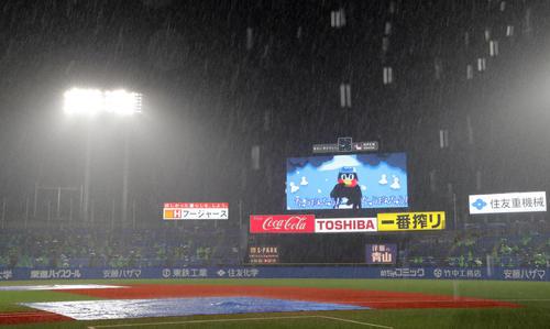 ヤクルト中日5回雨が強く試合が中断されている(撮影垰建太)