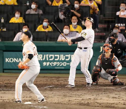 阪神大巨人7回裏阪神2社した3塁ボアは右翼アルプススタンドにFKを飛ばした直後大竹はおよそと交互に下車する(撮影・加藤初)
