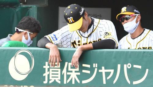 阪神広島東洋カープ17戦4回表広島1死満塁、下車となった藤浪晋太郎はベンチですっぽり(撮影岩の下翔太)