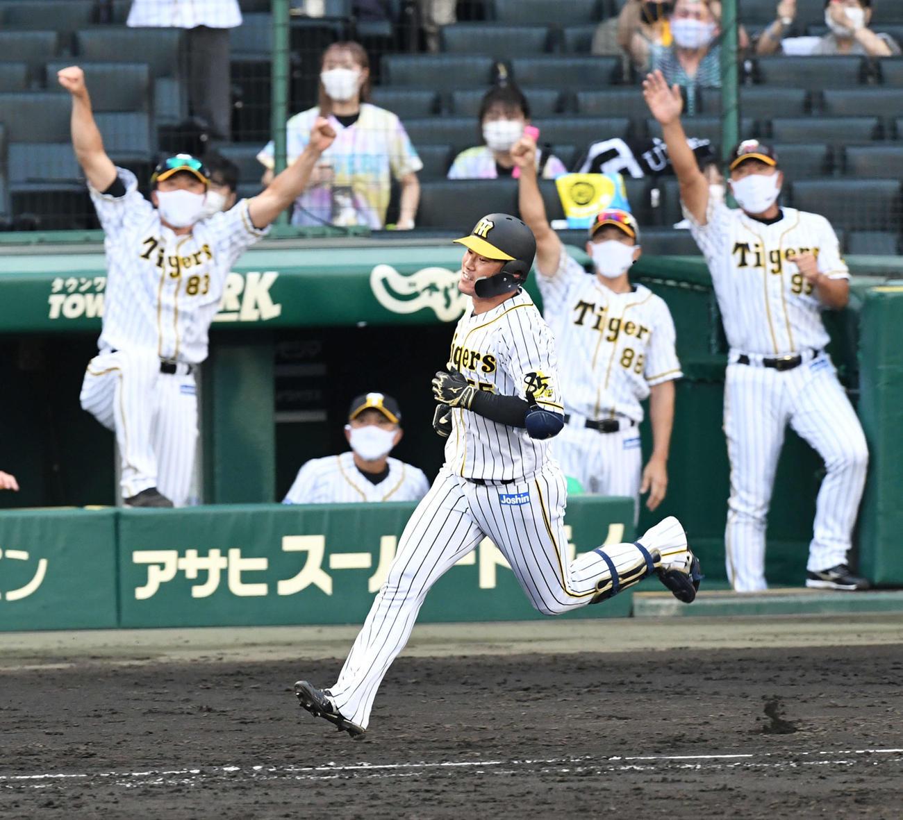 阪神対広島 8回裏阪神2死、陽川(手前)は中越え本塁打を放つ(撮影・前岡正明)