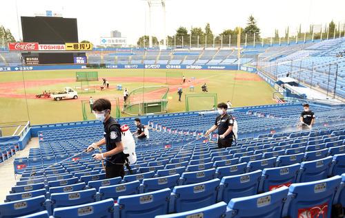 ヤクルトの広島球場収容人数の50%まで軽減します。 試合前に消毒作業に追われる球場スタッフ(撮影従う見明美)
