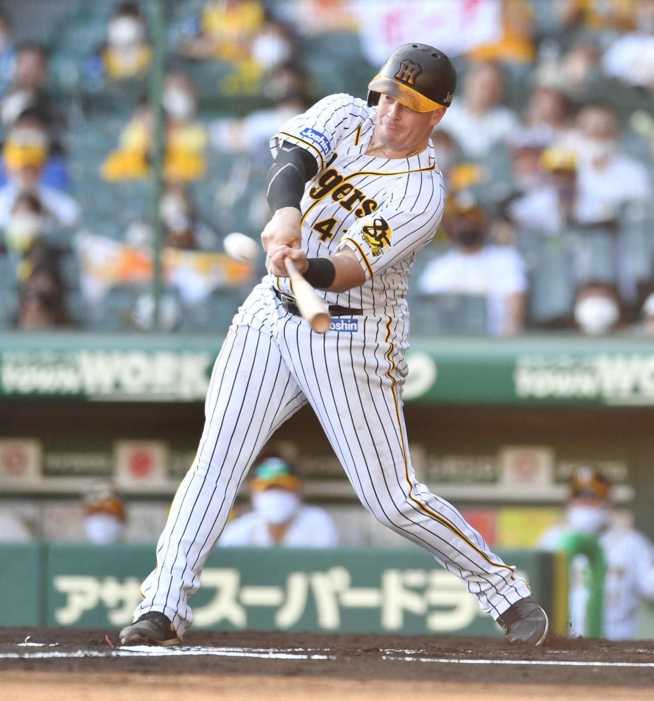 阪神対DeNA 6回裏阪神1死、ボーアはバックスクリーンへ同点本塁打を放つ(撮影・岩下翔太)