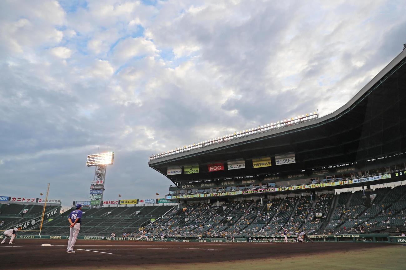 試合開始直前の雨が止み、曇り空の下で投球する青柳(2020年8月27日撮影)