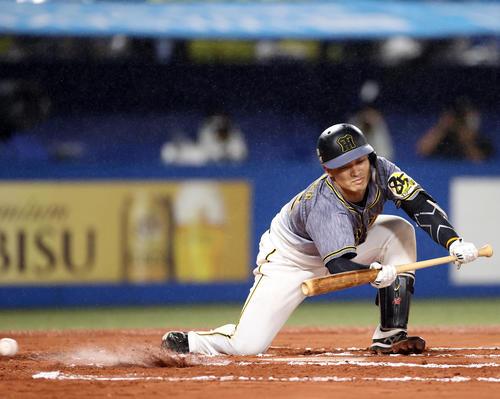ヤクルト対阪神 6回表阪神無死二、三塁、スクイズを失敗する坂本(撮影・狩俣裕三)