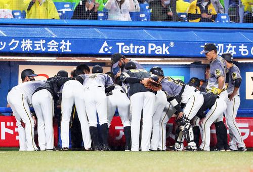 ヤクルト阪神タイガース4回表の攻撃前円陣を組む阪神ナイン(撮影・足立マーサ)